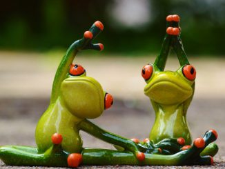 Frogs stretching