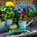 5 Promotional Gardening Items Everyone Will Love