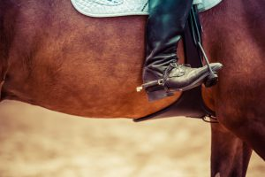 A boot in a horse straddle.